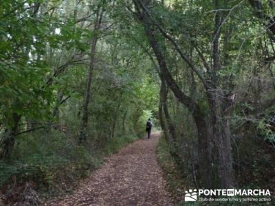 Cañones y nacimento del Ebro - Monte Hijedo;rutas madrid sierra;senderismo a tu aire
